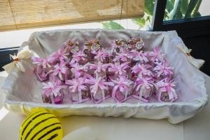 Bombomiele Battesimo Apicoltura Apoidea